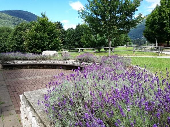 Prima vacanza con il cane in Trentino - centro fauna e flora alpina