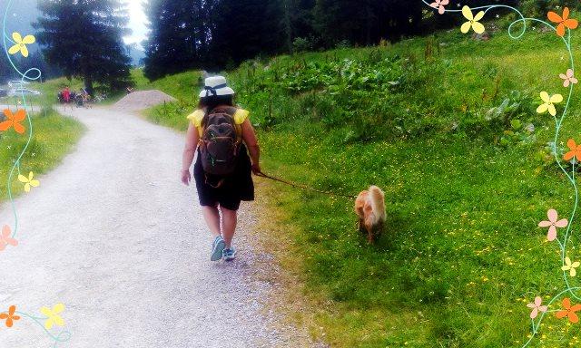 Prima vacanza con il cane in Trentino