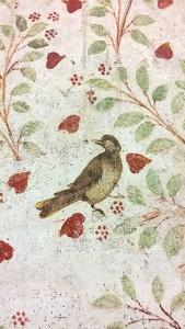 Domus Properzio Assisi